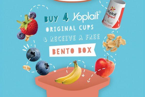 FREE YOPLAIT BENTO BOX